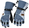 DSG Arctic Appeal Glove Snowmobile